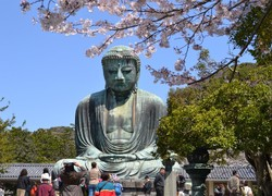Overview of countries and cities - Japan-kamakura