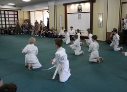 Congratulations to all the children who successfully passed the first level - 9 Kyu!