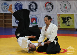 XXVI international seminar of Aikido Aikikai